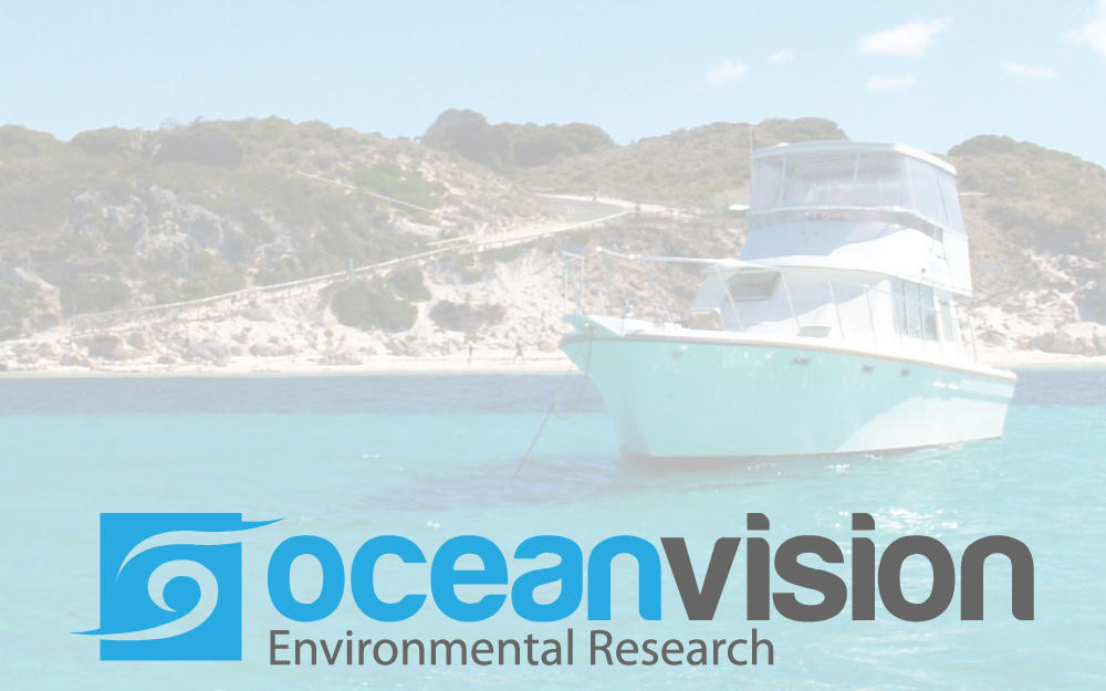 Ocean Vision has a New Website!